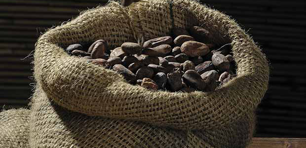 https://techcompanynews.com/wp-content/uploads/2018/10/IronFx-cocoa_beans.jpg